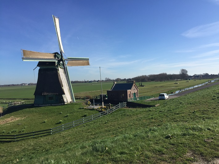 Fields and windmills near Hoorn