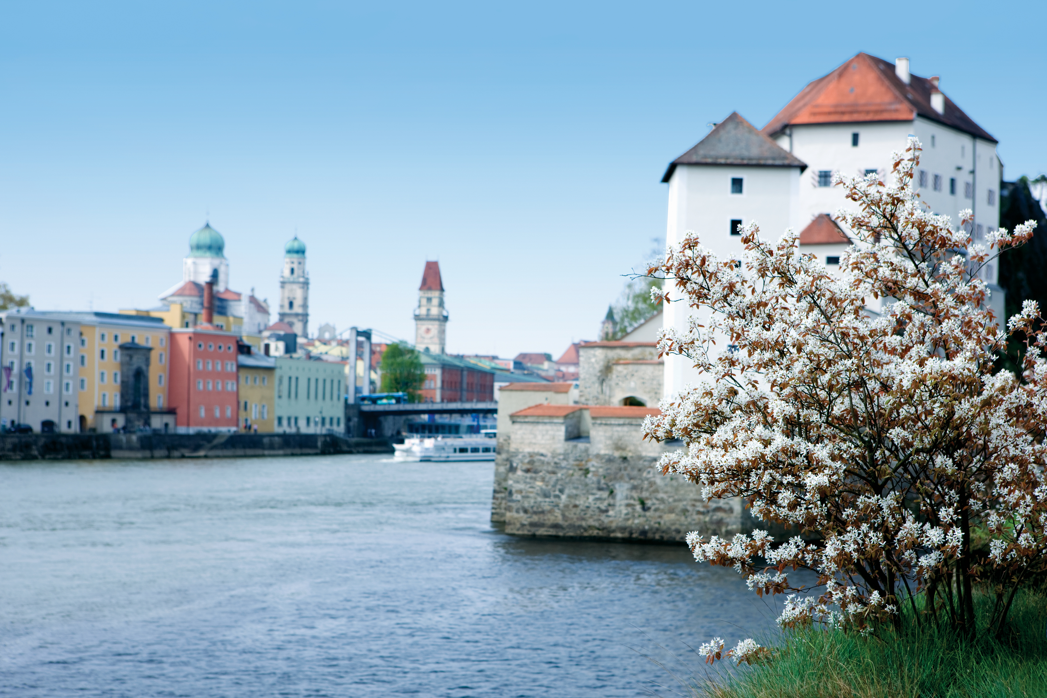Pastel-coloured houses and blossom trees in Passau, Germany, during spring