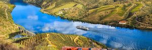 A river cruise ship gliding serenely down a stretch of the Douro bordered by lush fields