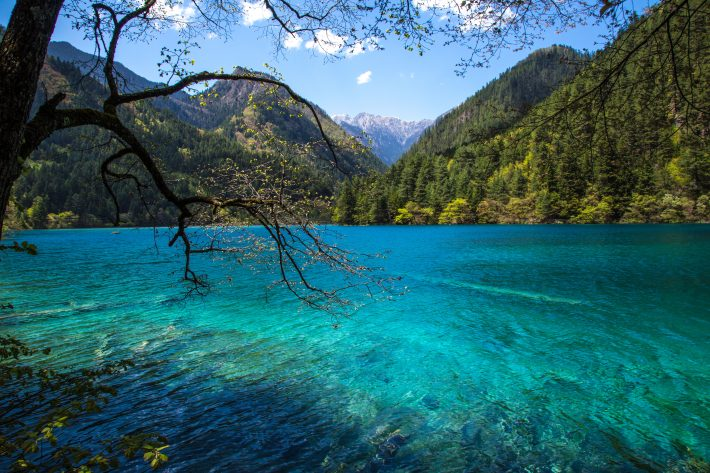 The piercing blue waters of Mirror Lake in Jiuzhaigou Valley, China