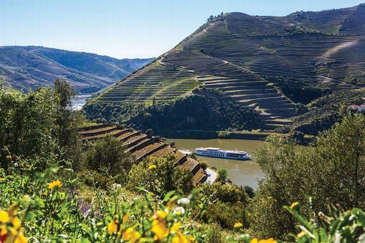 A river cruise ship sailing between lush vineyards in the Douro Valley during summer