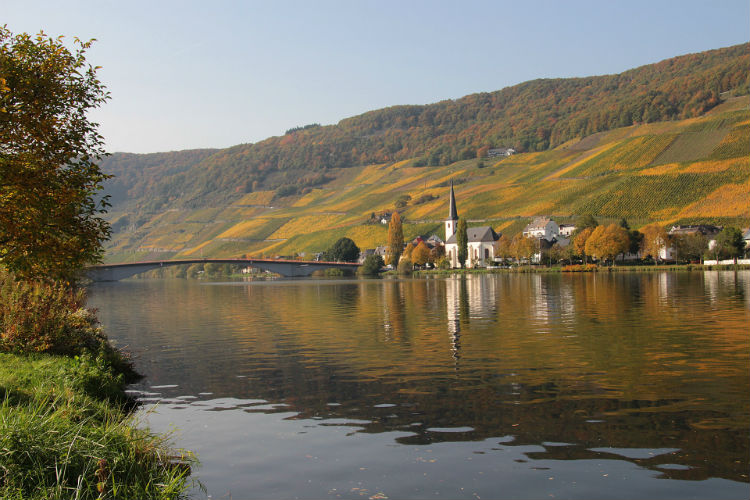 Moselle riverbanks