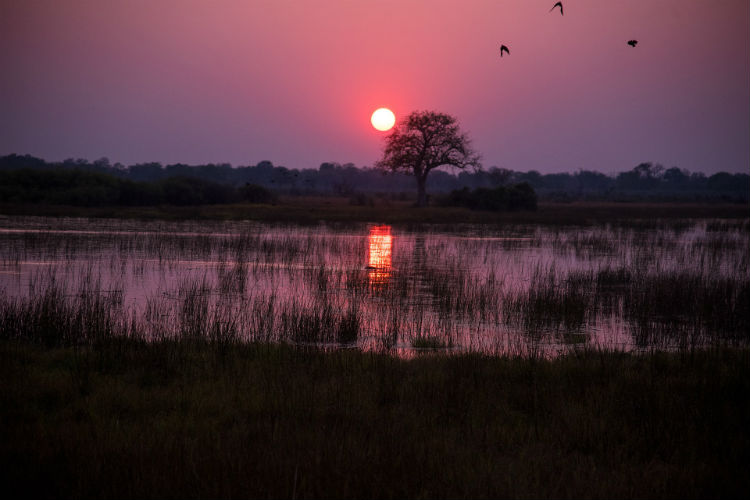 Sunset in Botswana, Africa