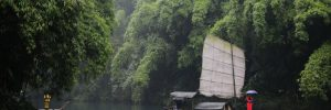 Yangtze River - Small boat sailing along the banks