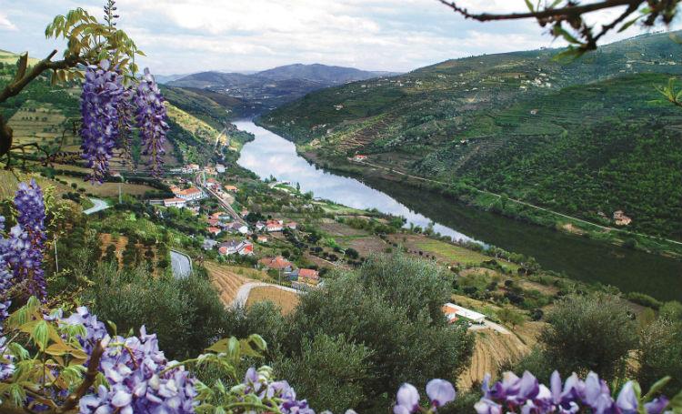 Douro Valley - Portugal - Douro River